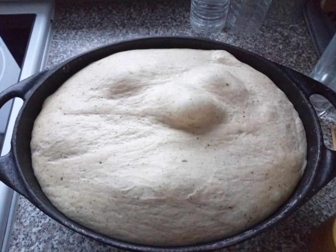 Brot; Brotteig; Sauerteig; gegangen; Form; Backform