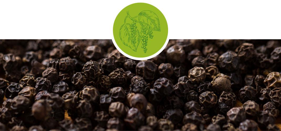 Pfeffer; Madagaskar; Langpfeffer; Szechuan; Telly Cherry; weiß; grün; schwarz; Schinuspfeffer