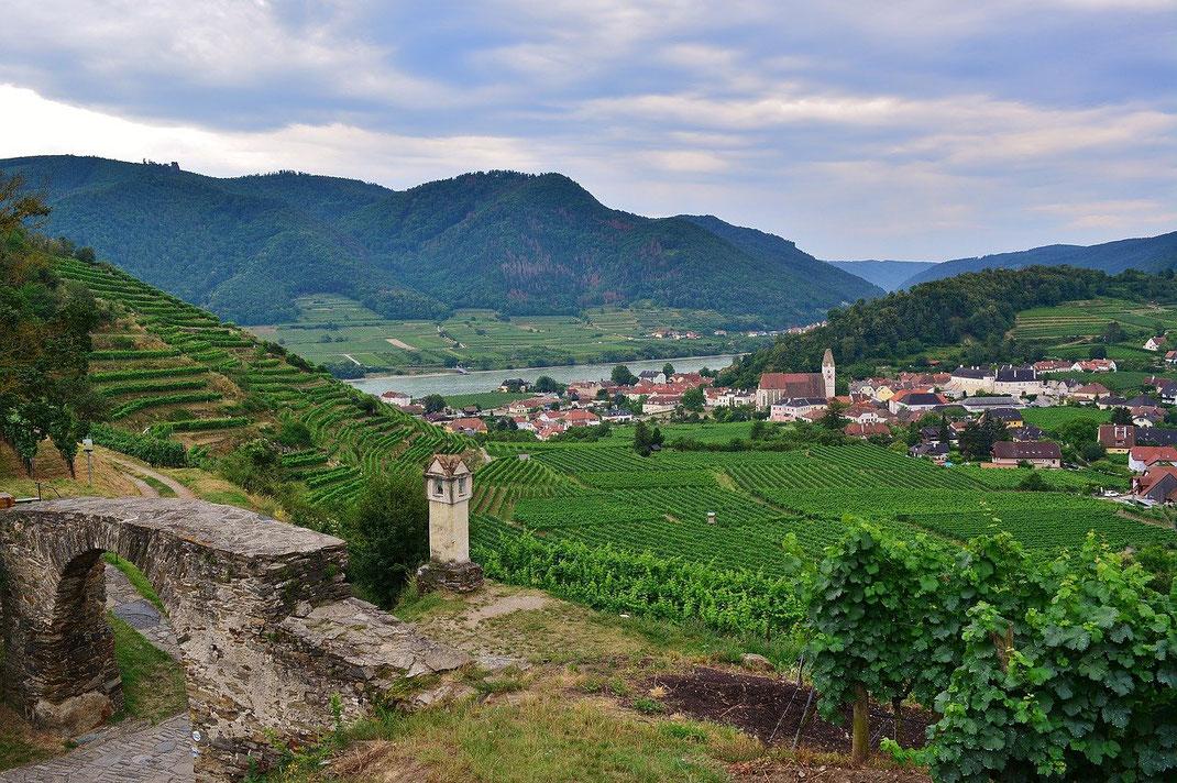 Wachau pur: Blick vom Roten Tor nach Spitz bis zur Donau