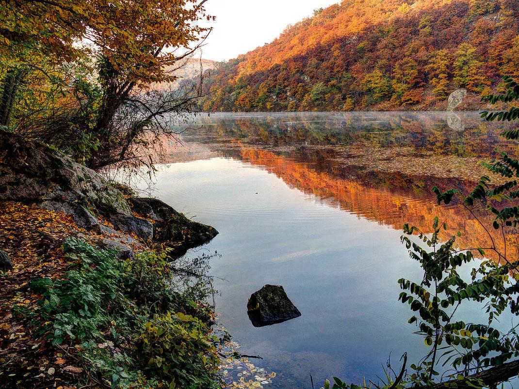 Rabensteintal  im Podyjí National Park, am linken Thayaufer zwischen Znaim und Frain