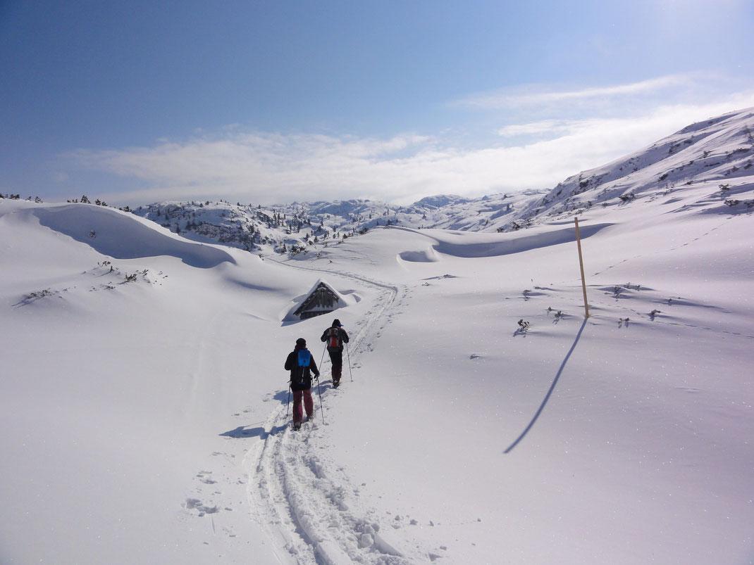 Wir wandern über den Stoa am Fuße des Dachsteins und genießen die Stille der Winterlandschaft