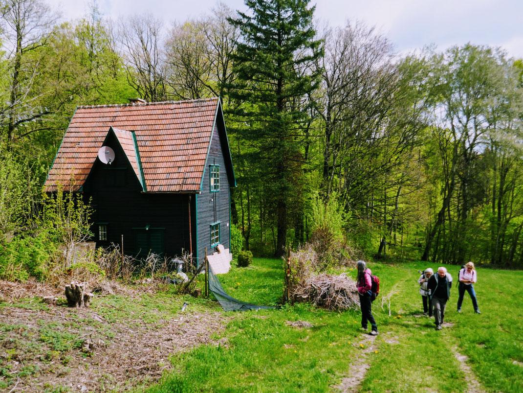 Der Fallerfall in Ternberg ist vor allem im Winter ein ganz besonderes Naturdenkmal