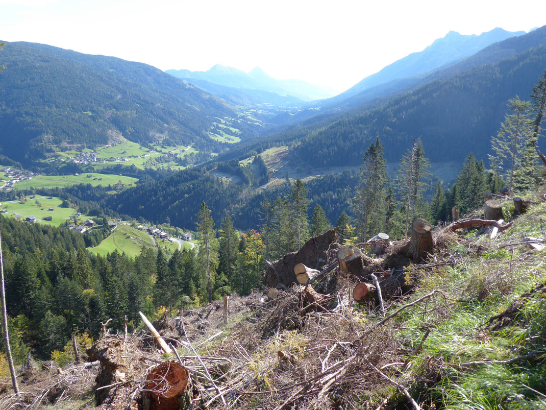 Ende Oktober 2018 wütete ein Sturm im Lesachtal. Die Aufarbeitung der Schäden am Wald dauert während unseres Besuchs noch an.