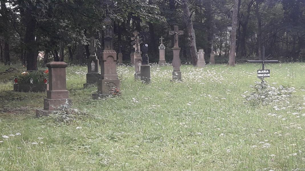 Die alten Friedhöfe der Lemken sind heute noch sichtbare Zeugen der in diesem Landstrich fast erloschenen griechisch-katholischen Kultur.