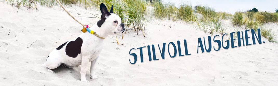 Hundestrand Hundeleine Hundehalsband Spazieren gehen am Strand Hund Bulldogge