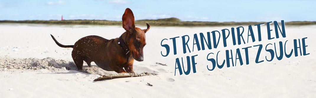 Hundestrand Shop besonderes für vier Pfoten Angebot Angebote