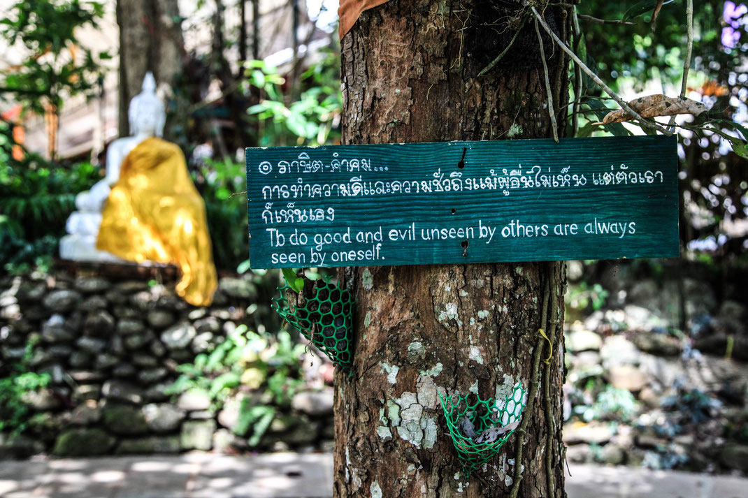 Wat Palad | Chiang Mai