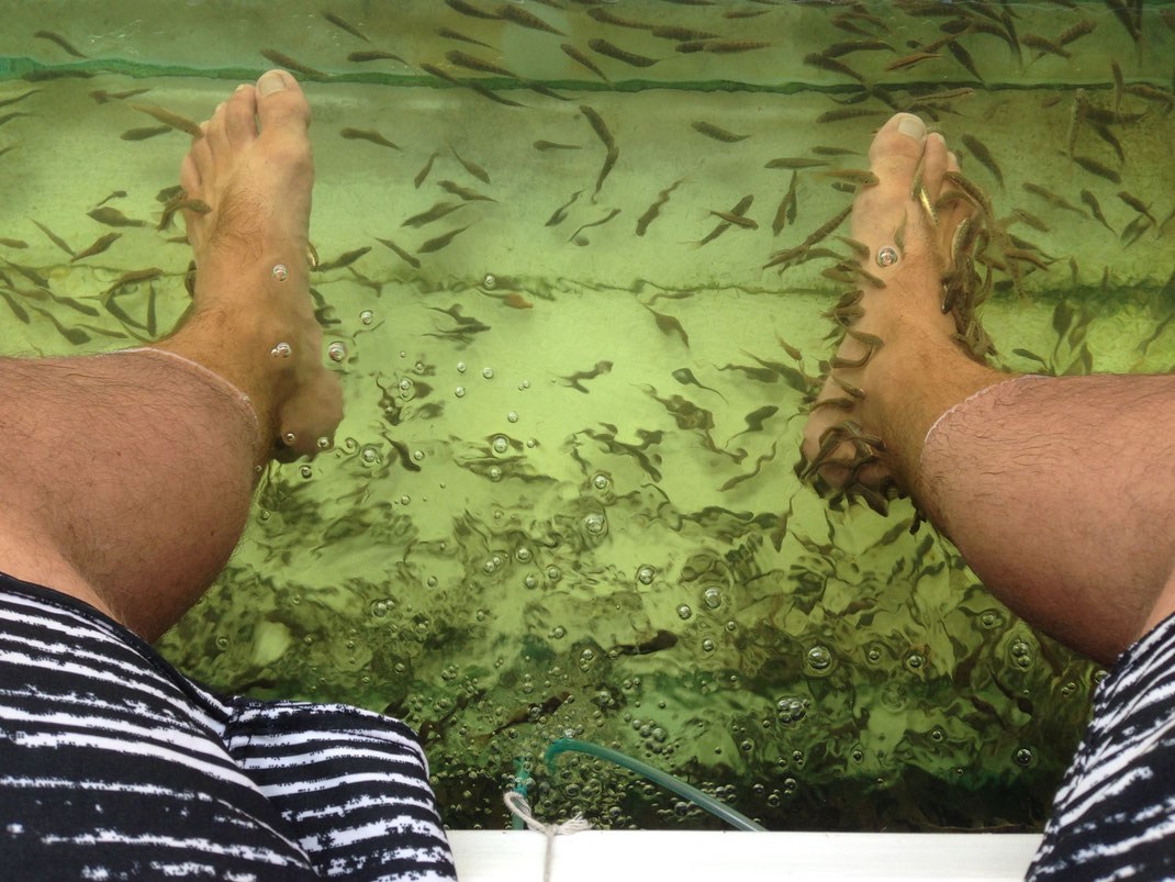 15 Minute Fish Foot Massage | Phuket