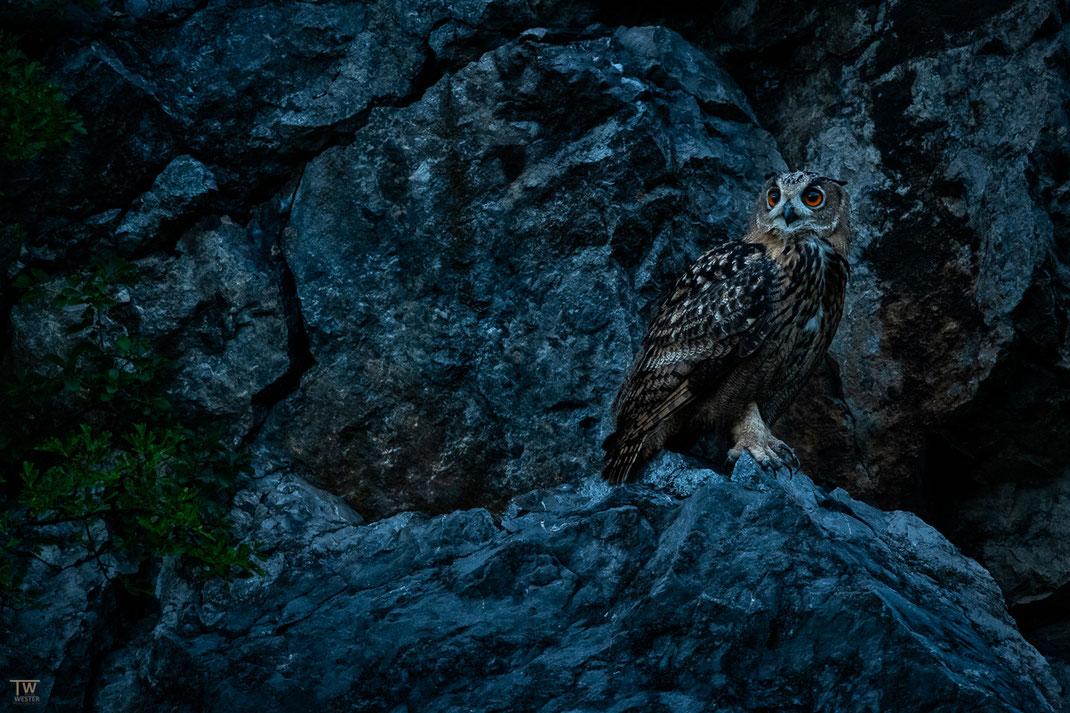 Einsteigen möchte ich mit dieser Szene noch in der tiefen blauen Stunde, in der mir die Felsformation gut gefiel (B2724)
