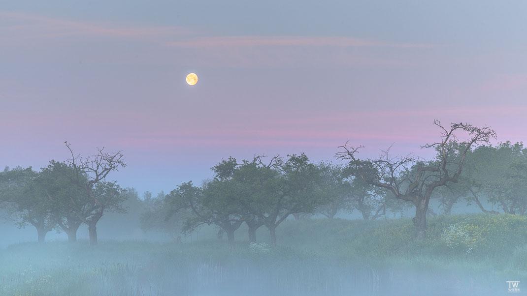 Mondlichtpanorama (B2589)