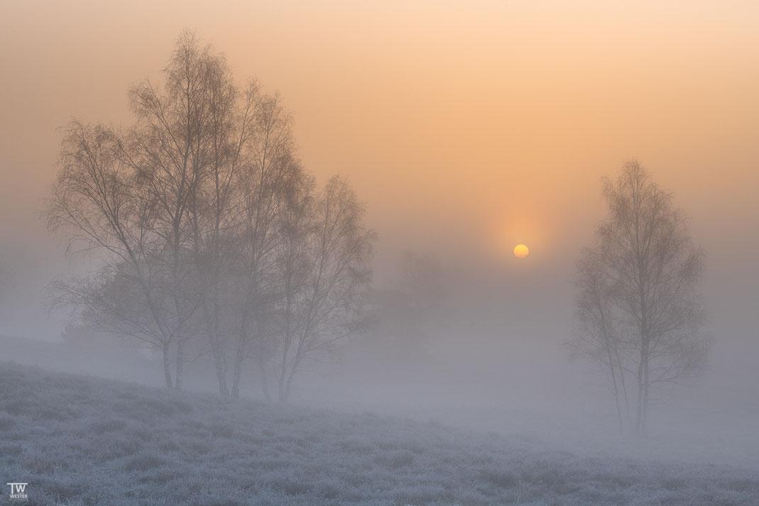 Ein frostiger Morgen, aber was für ein toller Sonnenaufgang das war (B2305)