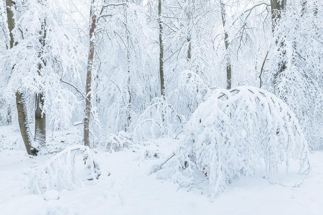 Schneebedeckt (B2331)