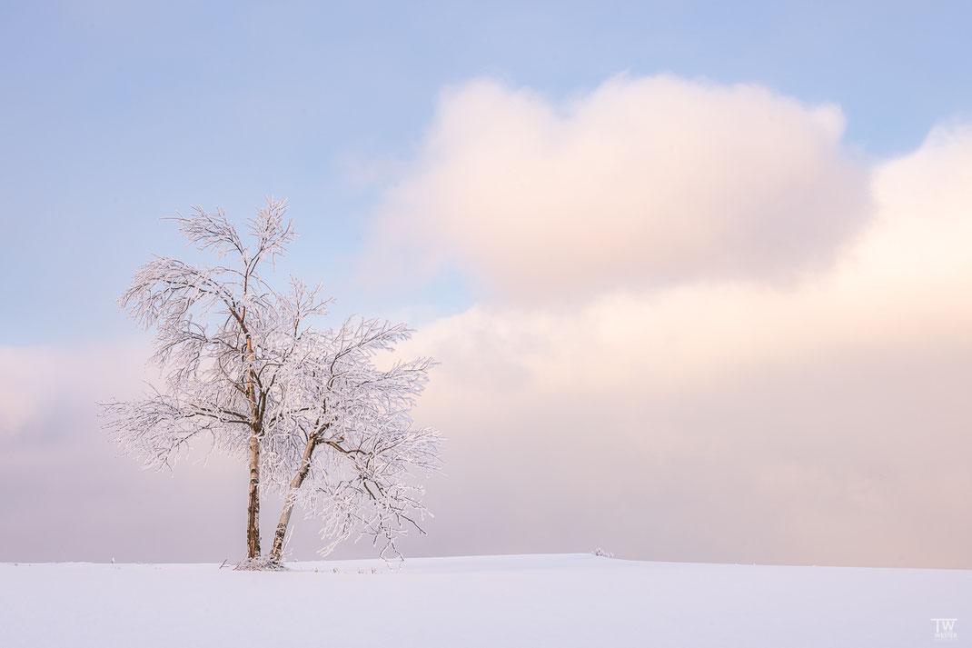 Und hier mit DER Wolke 😉 (B2499)