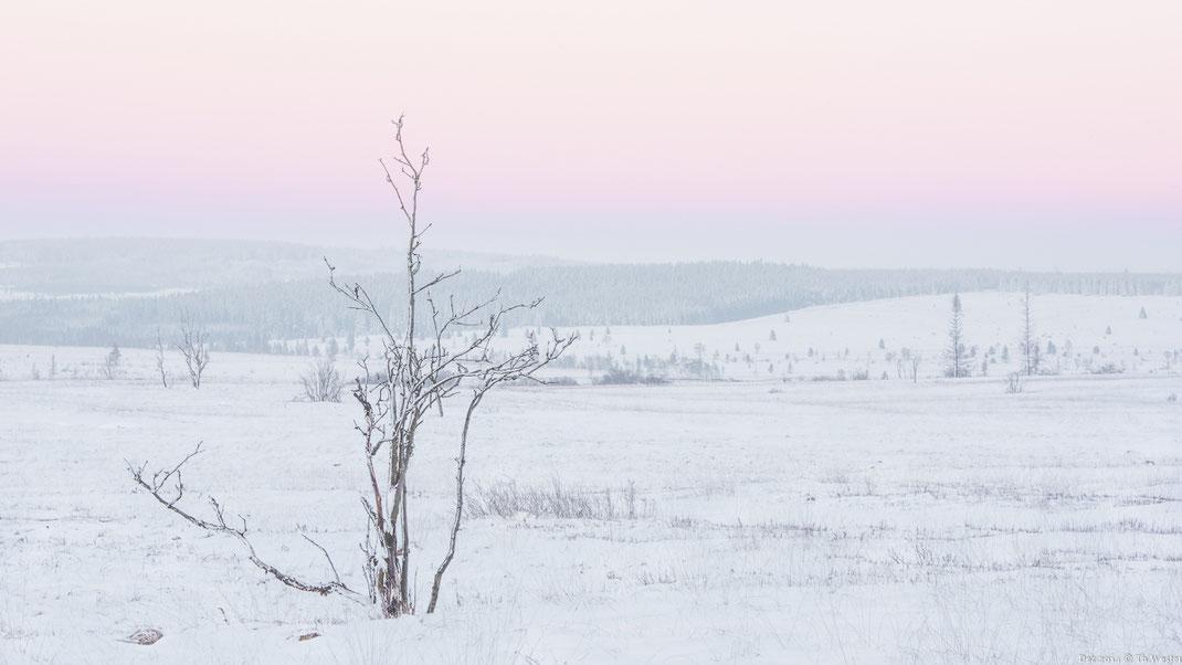 Diese Himmelsfärbung ist an kalten Tagen typisch (B262)