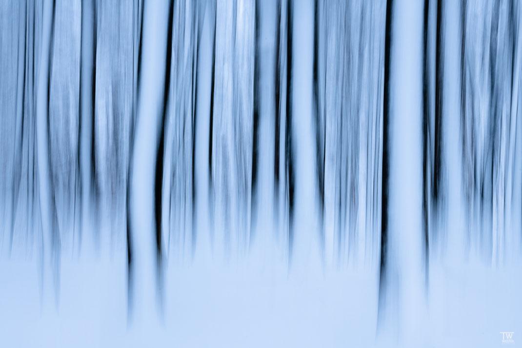 Shades of blue (B2404)