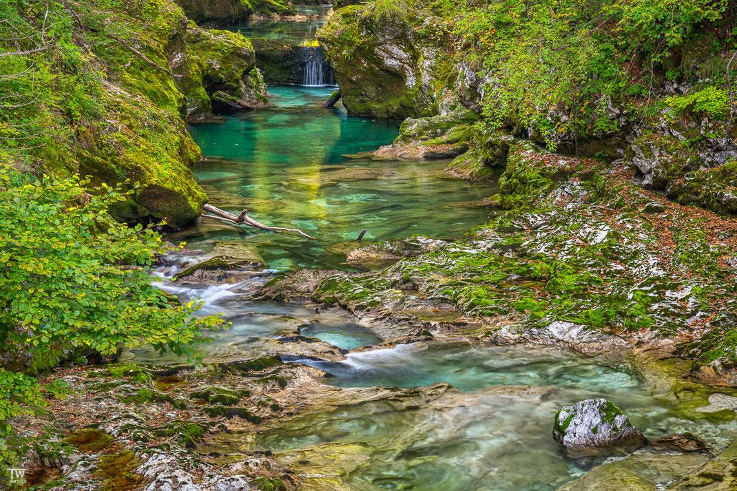Tiefer in den Wäldern gibt es auch grünliche Farben und tolle Steinstrukturen (B2235)