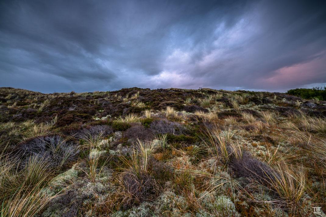 Hier zog über den Dünen, die mit Gräsern, Flechten und Moosen überzogen sind, ein Sturm auf (B2060)