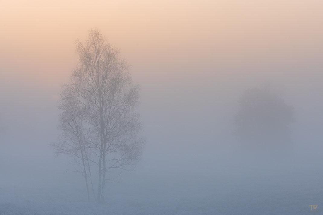 Warm und kalt (B2308)