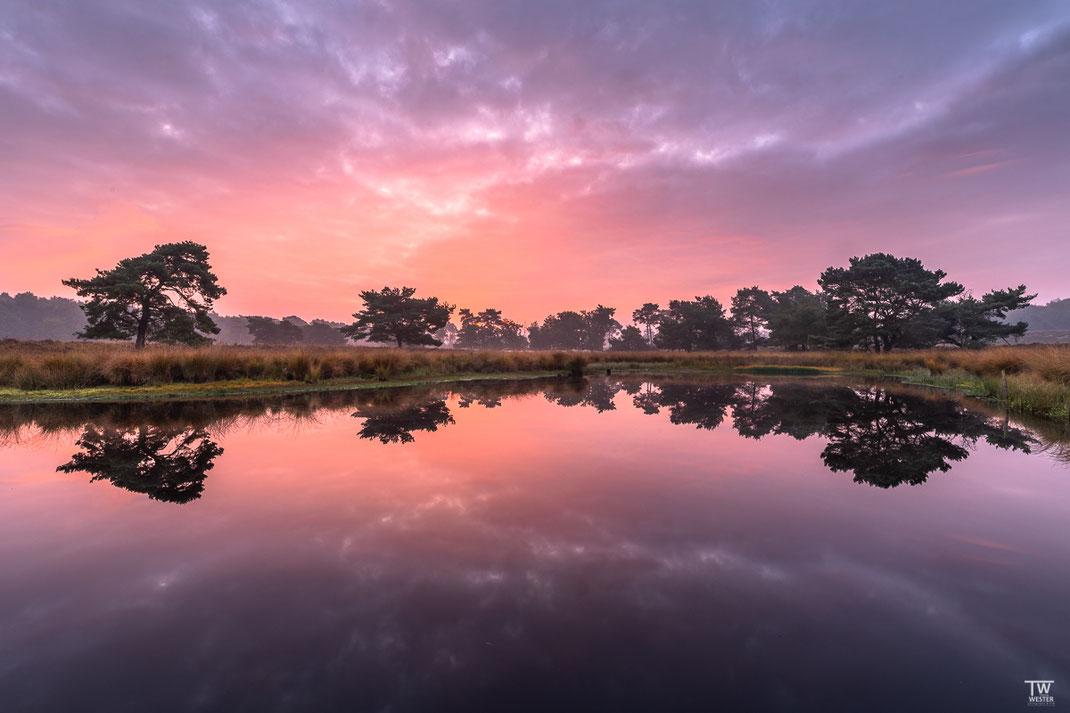An diesem Tag hatte ich einen tollen Sonnenaufgang (B2255)