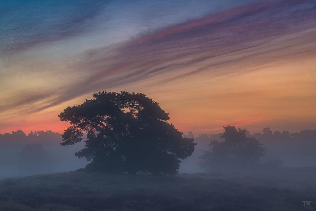 Dieses Wolkenbild gefiel mir sehr: ganz früh wirkte es wie Nachtwolken und war nur mit einer hellen Belichtung wirklich fotogen (B2741)