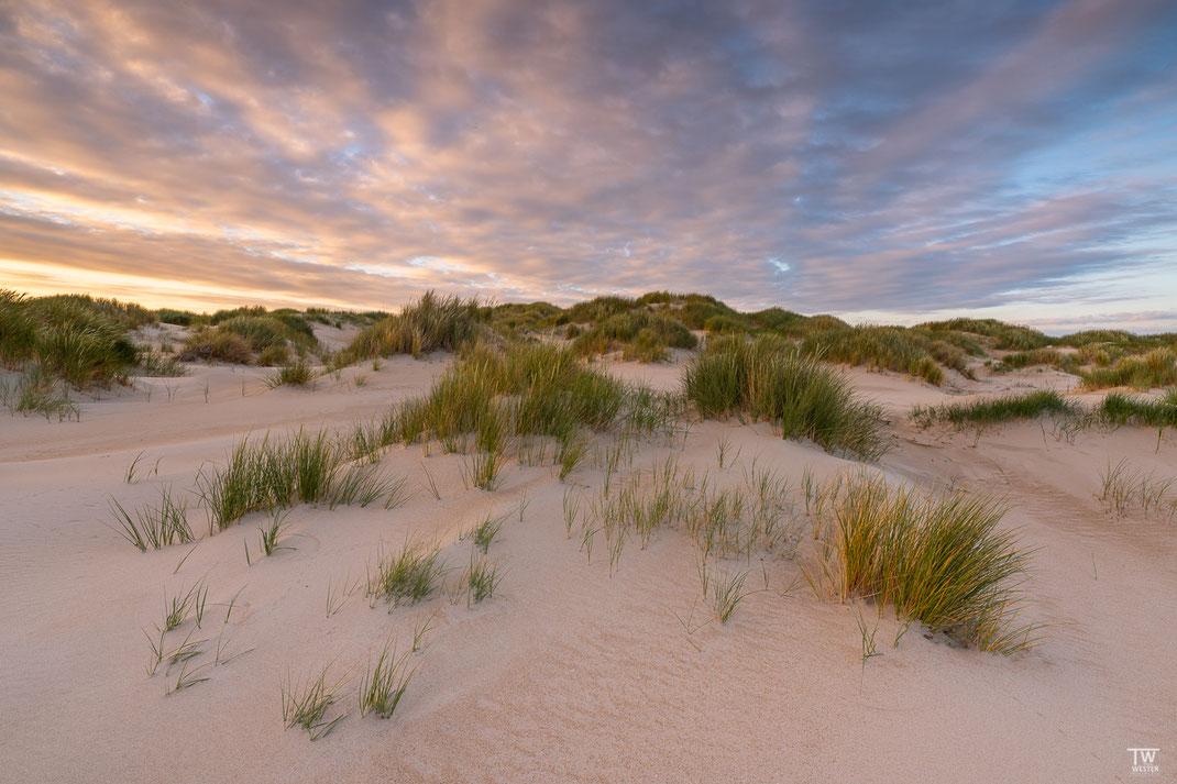 In diesen Dünen könnte man stundenlang laufen (B2053)
