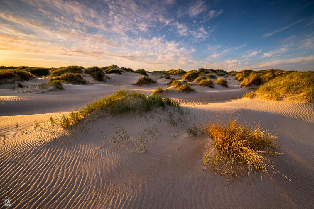Fangen wir direkt mal in den Dünen des äußersten Süden an: selbst auf Sylt oder anderen Nordseeinseln kenne ich nicht solch weitläufige und imposante Dünen (B2070)