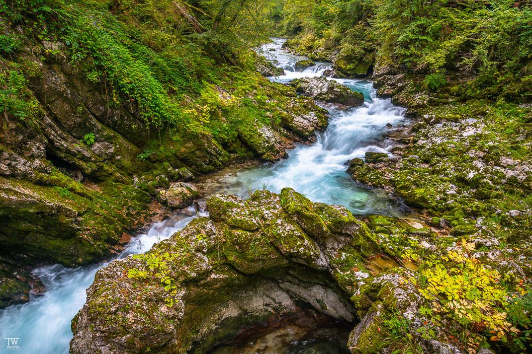 Der Flussverlauf (B2219)
