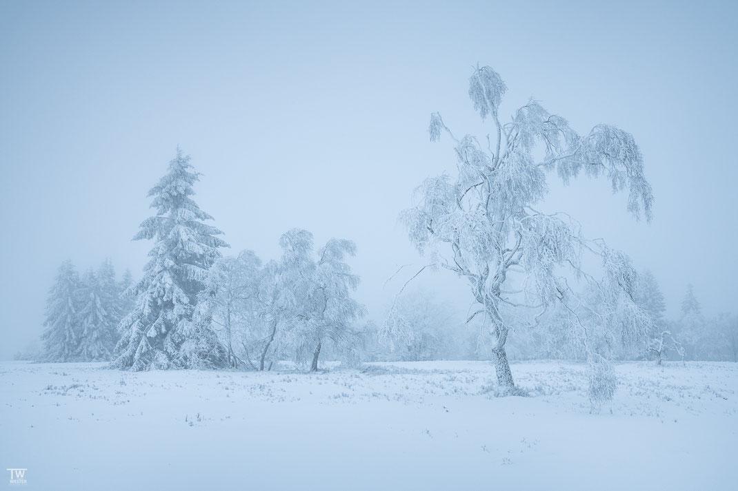 Schneebedeckt (B2351)