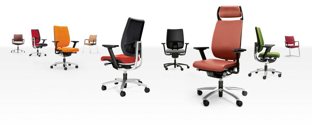 Sedus swing up komplette Produktfamilie, Drehstuhl, Besucherstuhl, Konferenzstuhl in Netz, Slim Polster und Vollpolster