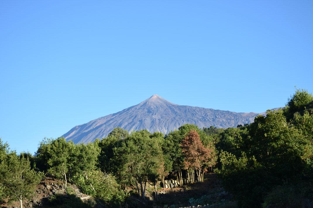 ein göttlicher Anblick des Pico del Teide in San Jose de los Llanos