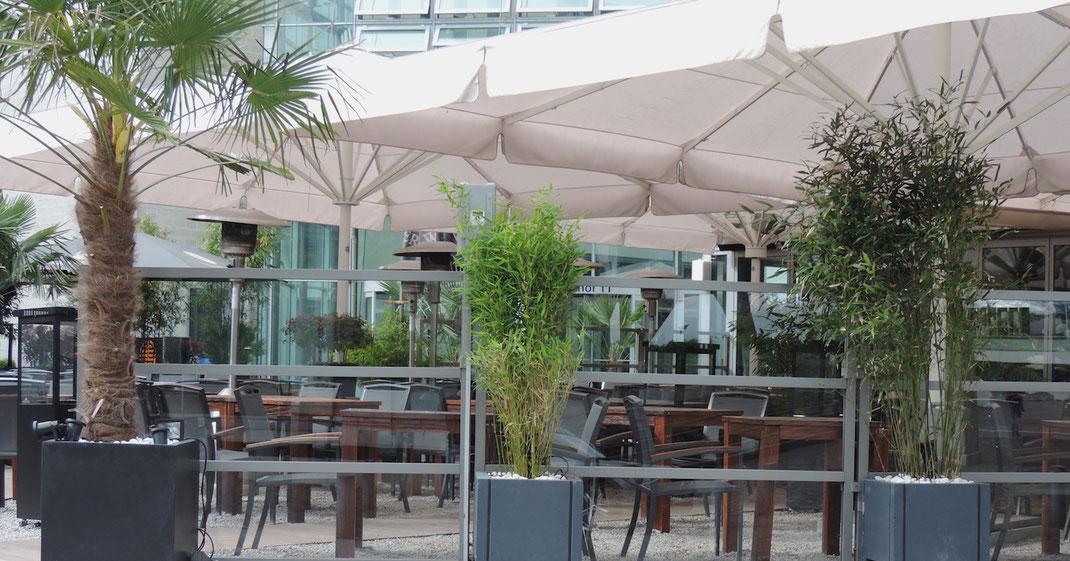 Windschutzanlage mit Pflanzen auf Gastronomie Terrasse