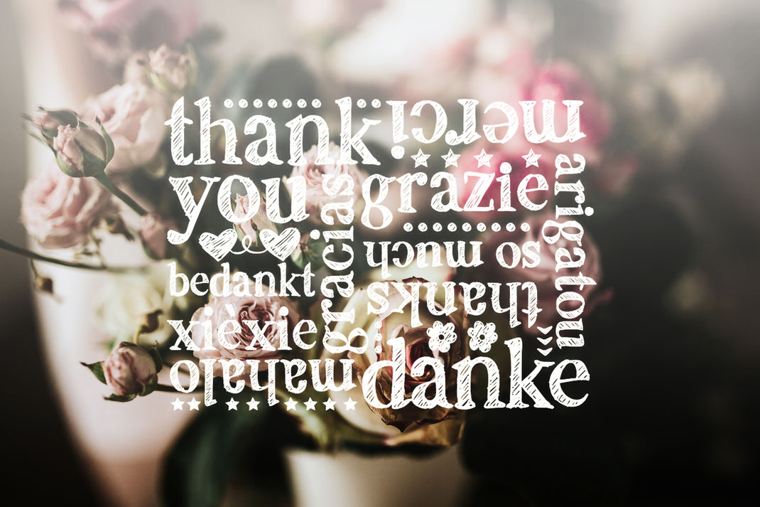 Danke, Thank you, vielen Dank, Merci, thanks, mahalo, bedankt, grazie, so much, gracias