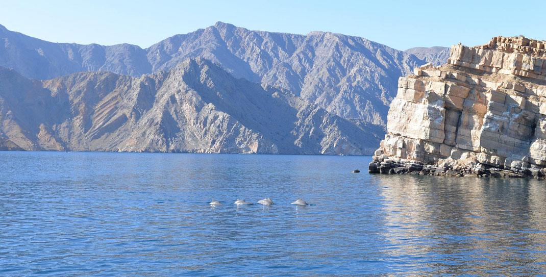 Réveil dans les Fjords Omanais