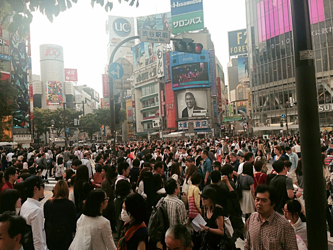 Shibuya , un jour normal
