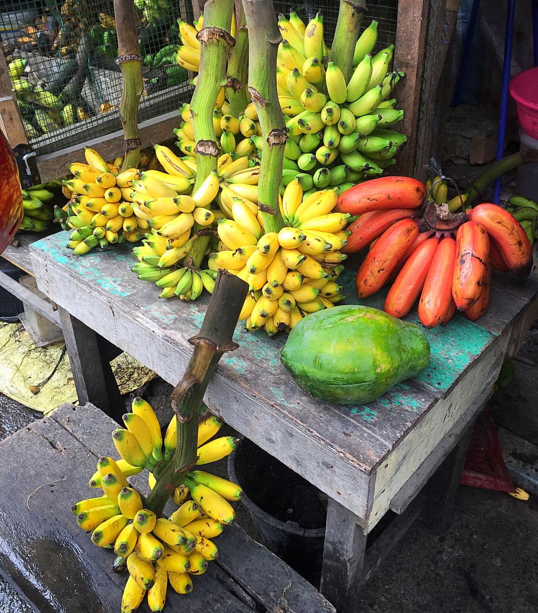 Toutes sortes de bananes à sinabang !