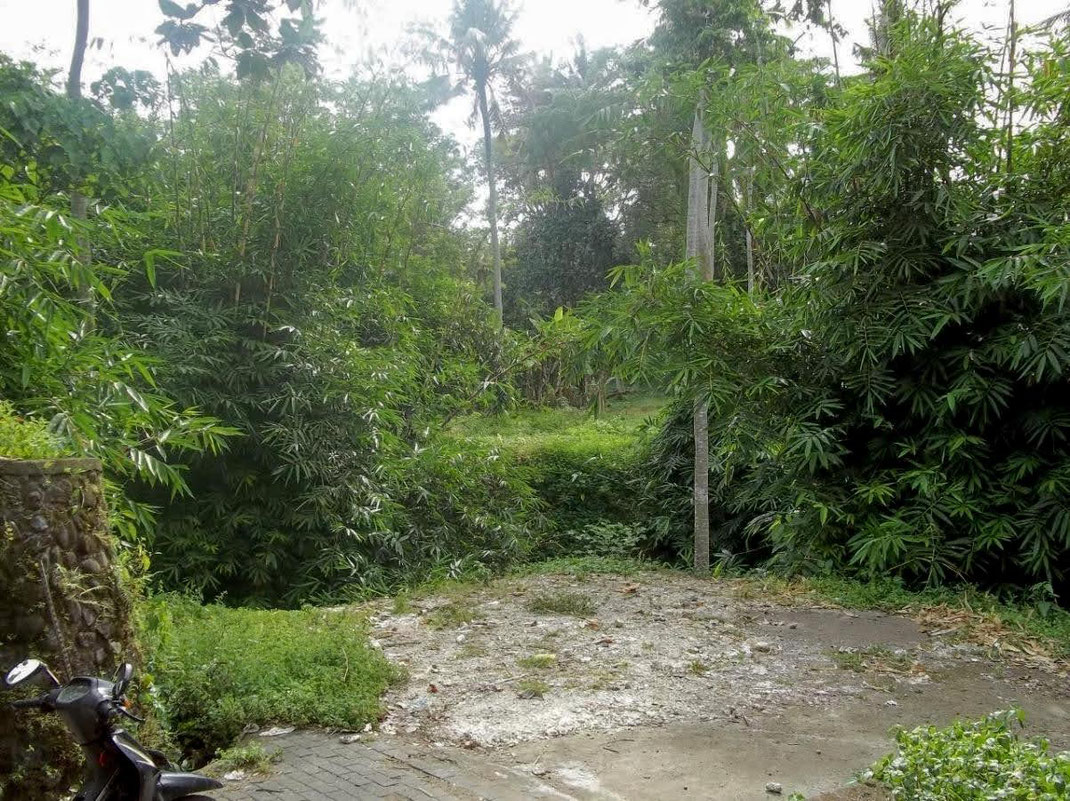 Cempaka land for sale. Tabanan land for sale