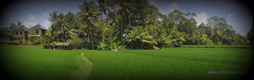 Finest property for sale in Bali.