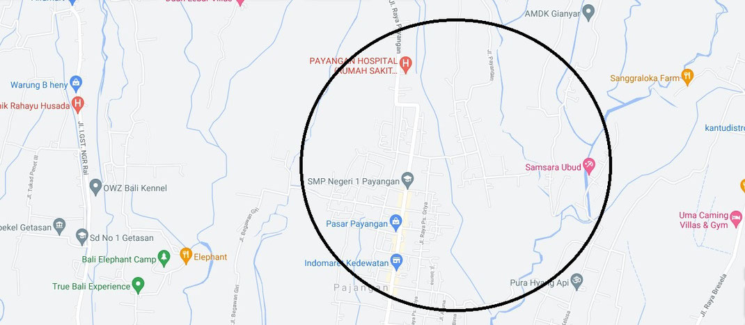 Payangan villa for sale