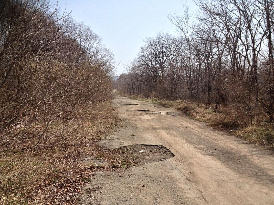 Один из участков дороги на Пристань. Этот ещё в хорошем состоянии.
