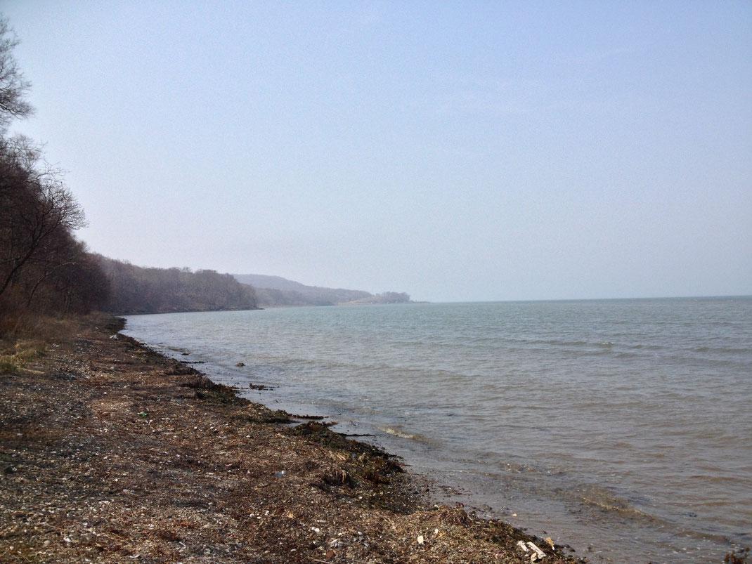 Море в этом месте почему то часто грязное. Возможно от ила наносимого из близлежащего устья реки Шкотовка.