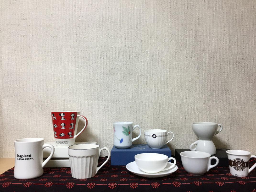 茶谷順子 カップの集合写真