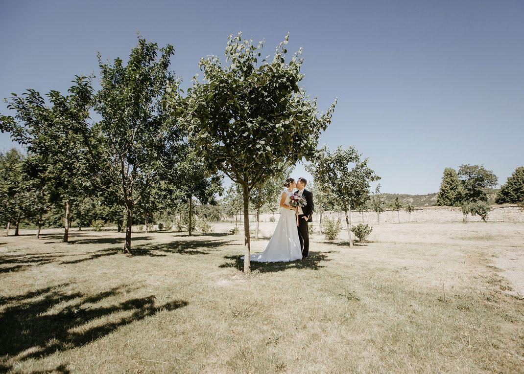Naumburg Saale heiraten hochzeit fotos fotografie