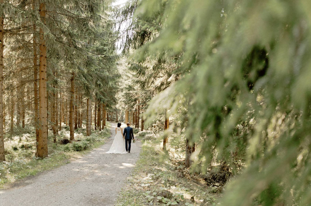 greifensteinwald, Gifthütte hormersdorf, Jugendherberge hormersdorf, Hochzeit