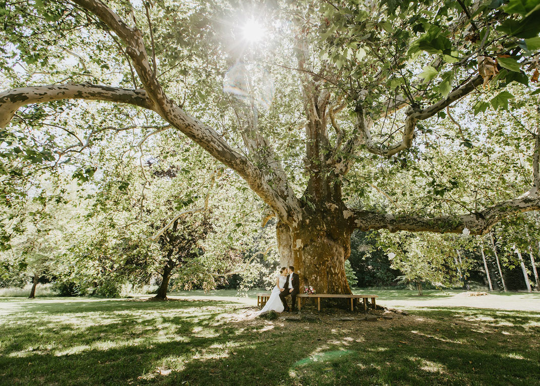 Park der Stiftung Schulpforta Naumburg Saale Hochzeit
