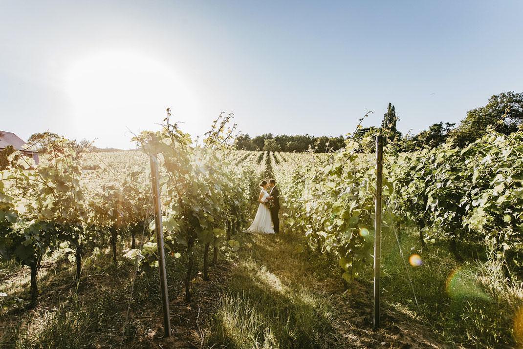 Naumburg Saale Hochzeitsfotograf , Weinanbaugebiet Saale-Unstrut