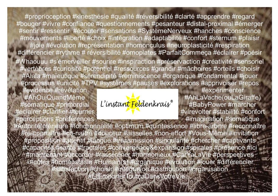 feldenkrais manosque volx villeneuve oraison greoux les bains thermes cours gym douce dos apprendre éducation somatique hypnose sophrologie praticienne bien-êtrePCM IF prise de pleine consience par le mouvement intégration fonctionnelle kiné osteo