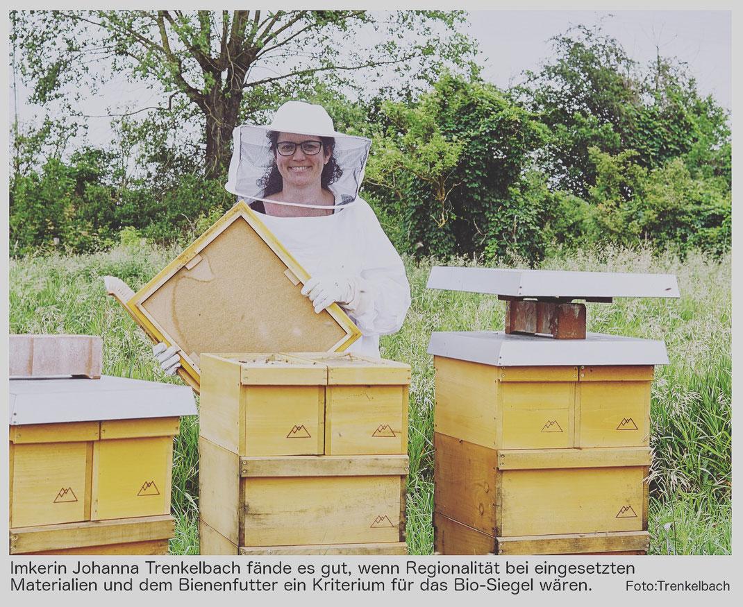 Bio-Bienen gibt es nicht? Ein Artikel über die Bio-Imkerei von Jana Tashina Wörrle.