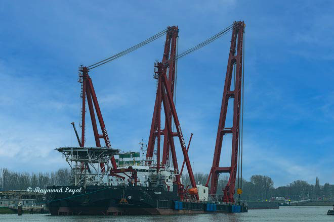 floating crane at rotterdam waalhaven