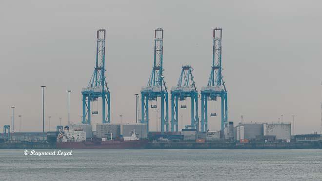 container brücke seehafen zeebrugge belgien