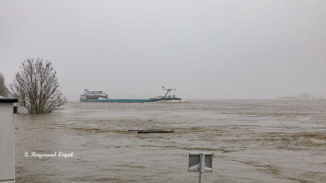schiff rhein fluss wasser hochwasser landschaft